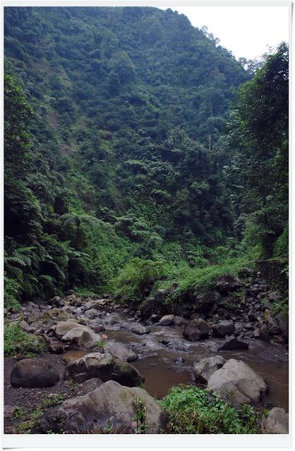 Perjalanan Menuju Air Terjun Madakaripura